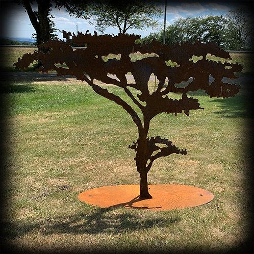 """Baum """"Akazie"""""""