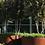Thumbnail: CORTEN-Hochbeet rund