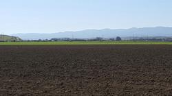 Field after S&E Fertilizer Spread