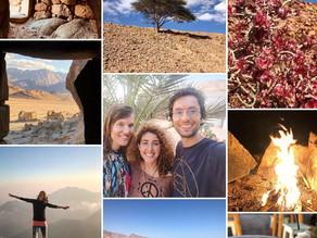 Sinai retreat ~ The End