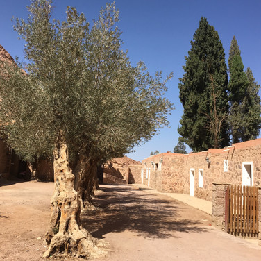 New Earth - St. Catherine Monastery - Spiritual Journeys in Egypt - Hira Hosèn