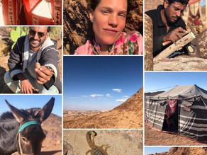 Sinai Retreat ~ The Desert