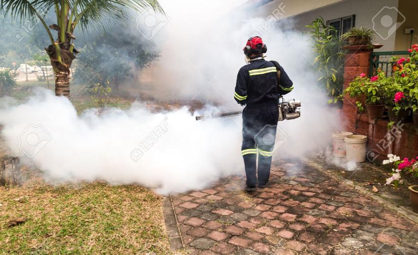 Mosquito Fumigation Service