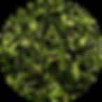 GreenBioMaterial.png