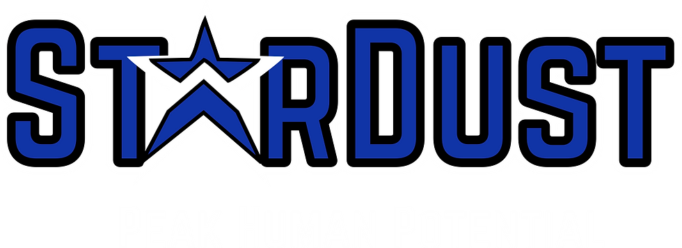 logo Stardust11.png