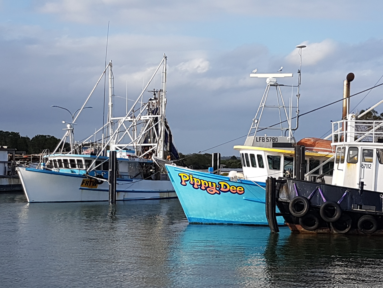 Yamba trawlers