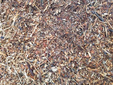 Five Benefits of Using Mulch