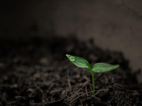 Soil Testing Kit Product Development Collaboration