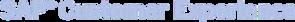 SAP Logo Blue.png