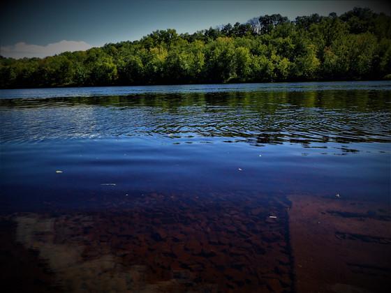 Chippewa river shore edge