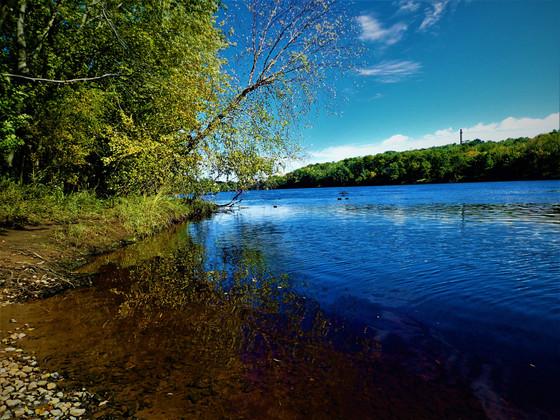 Chippewa River Shore