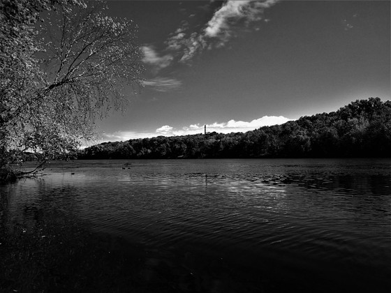 Chippewa River Shore b/w