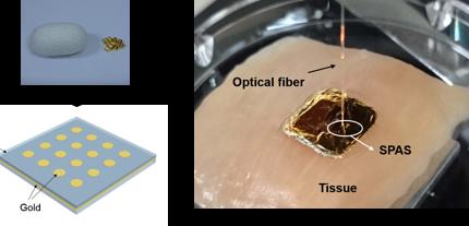A new biocompatible nano-optical sensor