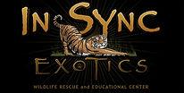 In-Sync Black Logo.jpg