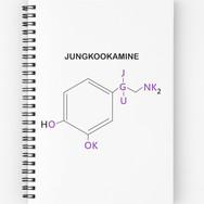 jk compound notebook