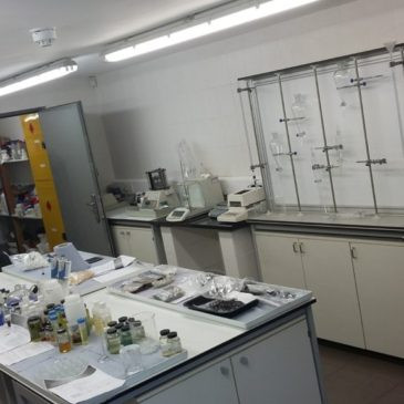 RSBruce_Lab_2-1024x576-365x365.jpg