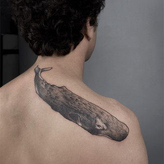 whale tattoo coverup berlin cover should