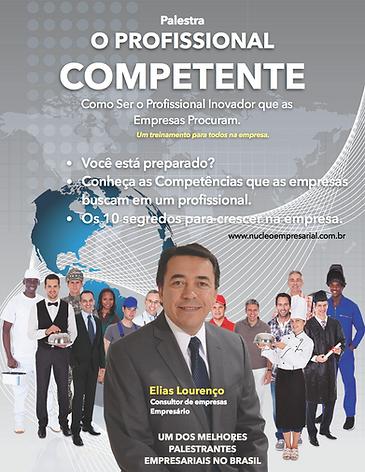 Prospecto O Profissional Competente.png