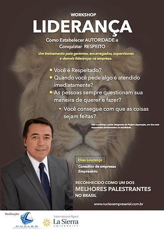 Novo_Folder_de_Liderança_2.png
