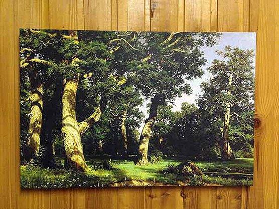 Печать на холсте Репродукция картины И.Шишкина.jpg