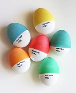 eggs01.jpg