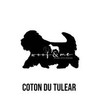 Coton Du Tulear.jpg