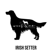Irish Setter.jpg