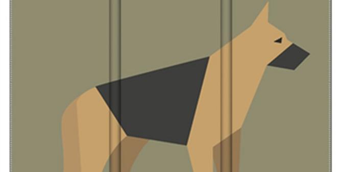 Room Divider Folding Screen - Smart Shepherds