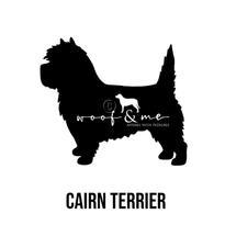 Cairn Terrier.jpg