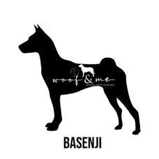 Basenji.jpg