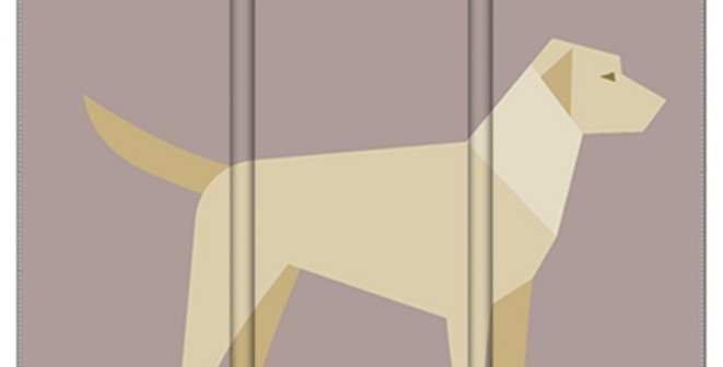 Room Divider Folding Screen - Lucky Labs