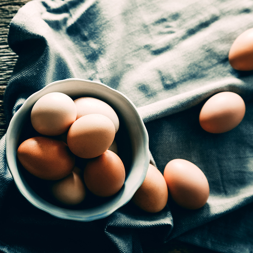 Eggs for Dog Upset Stomach