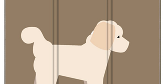 Room Divider Folding Screen - Cuddly Cavachons