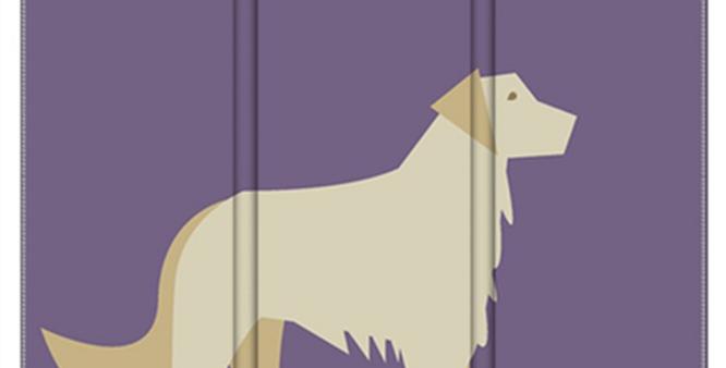 Room Divider Folding Screen - Goldens Galore