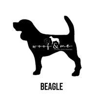 Beagle_New.jpg