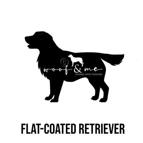 Flat Coated Retriever.jpg