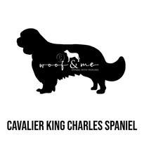 CAVALIER KING CHARLES_NEW.jpg