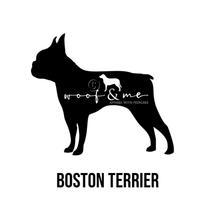 Boston Terrier.jpg