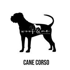 Cane Corso_Natural.jpg