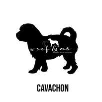 Cavachon.jpg