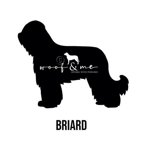 Briard.jpg