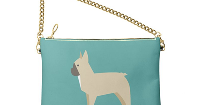 Colour Pop Leather Bag - Fancy Frenchies