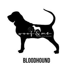Bloodhound.jpg