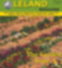 MarchLeland Cover.jpg