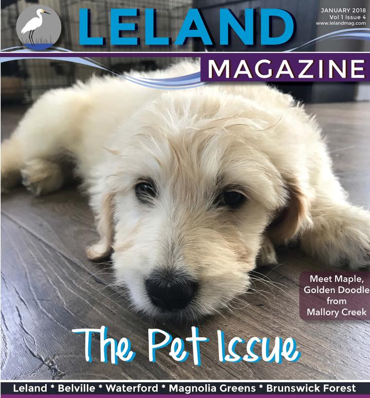 Leland Magazine January 2018 Issue