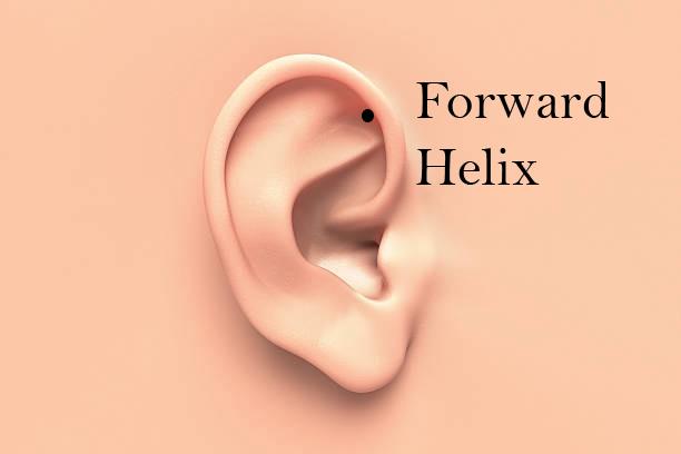Forward Helix