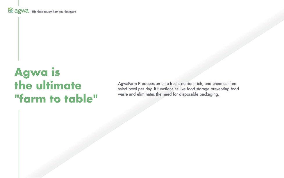 Agwa's Brochure_Page_5.jpg