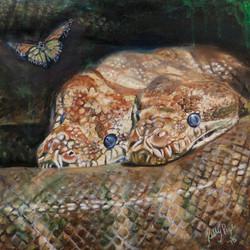 Anaconda Love