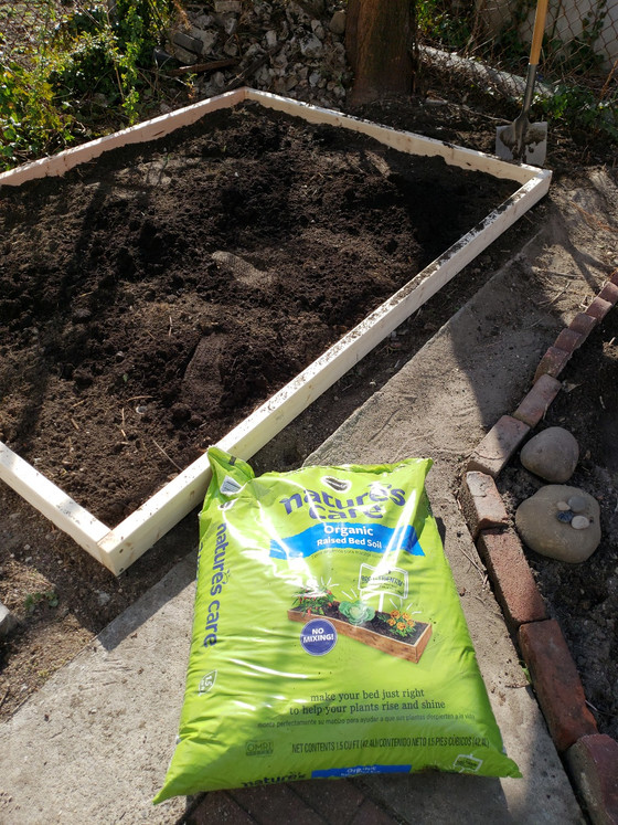 Getting your Urban Garden Ready for Spring: Cleaning Your Soil & Building a Raised Bed