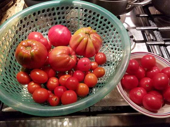 You say tomato, I say pomodoro.